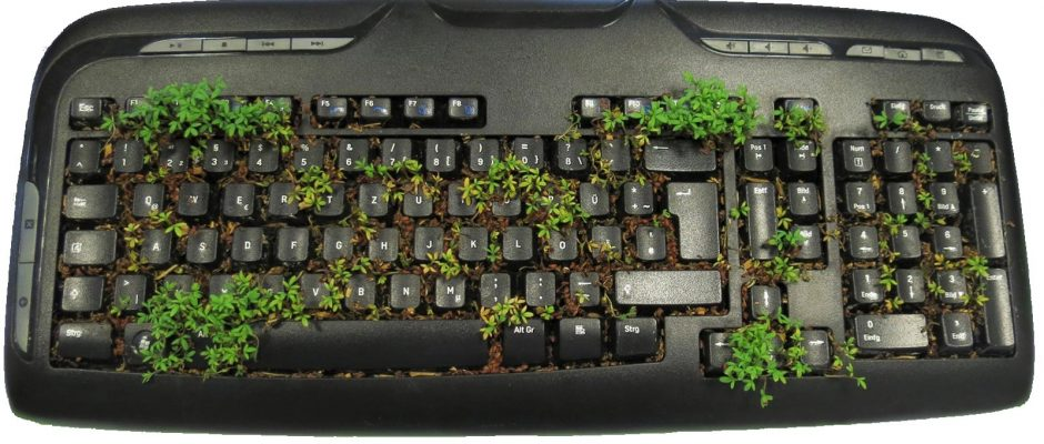 recyclage-environnement